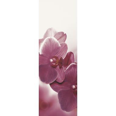 Абріла квітка В 20х60 PARADYZ Декор